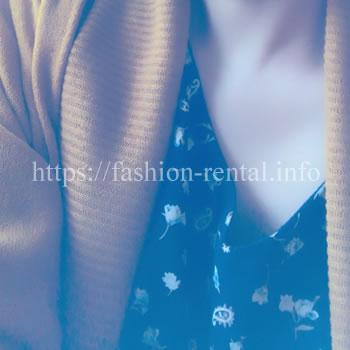 エアークローゼット秋の服